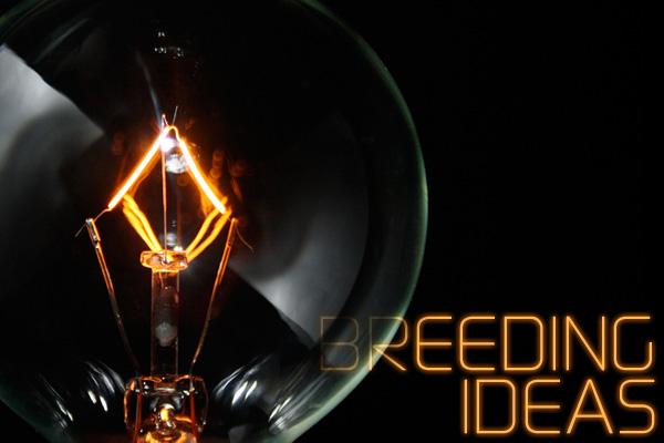 Breeding Ideas